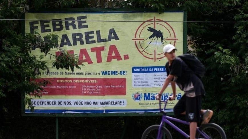 Brazil declares yellow fever emergency in Minas Gerais