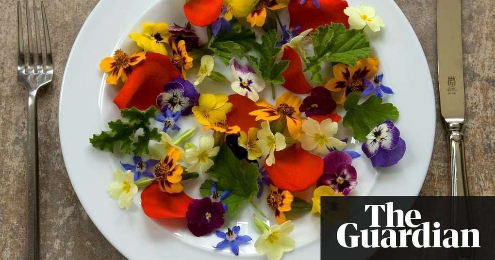 How to eat flowers without poisoning yourself | Life and style | The Guardian