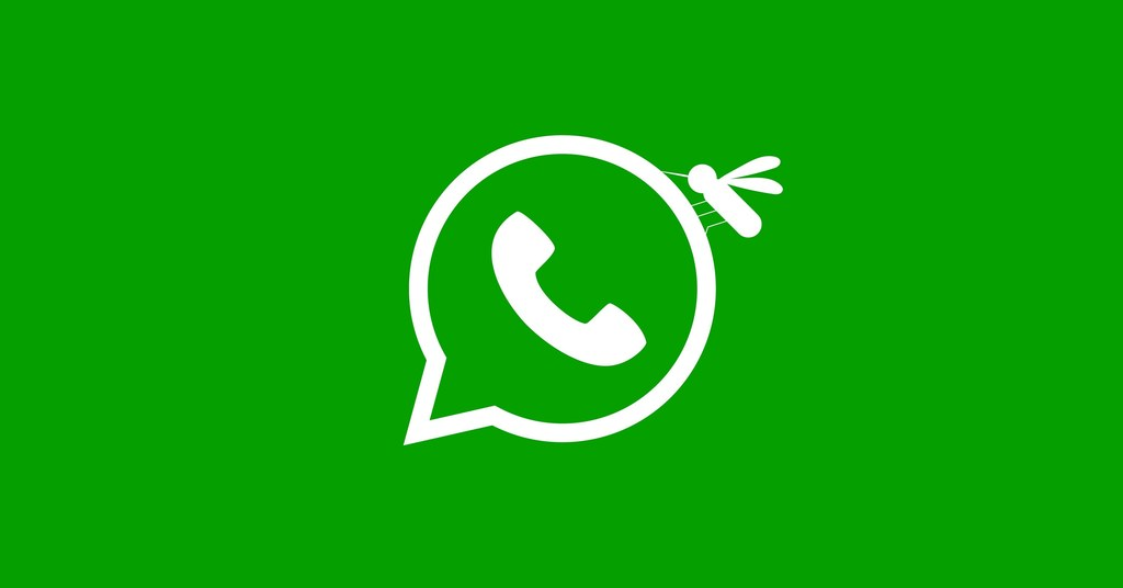 How WhatsApp Could Worsen Brazil's Yellow Fever Outbreak